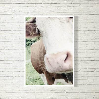 kartlerei poster bild drucken bayrisch spruch kuh 400x400 - Poster und Bilder
