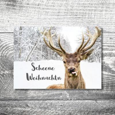 kartlerei karten drucken gestalten bayrische weihnachtskarten frecher hirsch 400x400 - Frecher Hirsch | 2-Seitig | ab 0,70 €