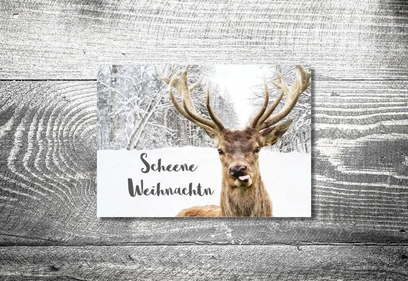 kartlerei karten drucken gestalten bayrische weihnachtskarten frecher hirsch - kartlerei Magazin