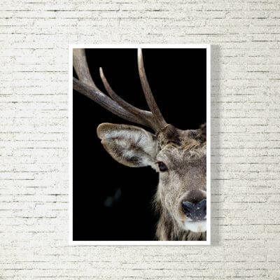 kartlerei poster shop bilder drucken bayrischer spruch bayrisch9 400x400 - Poster und Bilder