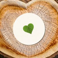 kartlerei bierdeckel nachhaltigkeit oekologisch nachhaltig biologisch abbaubar kompostierbar - Bierdeckel Nachhaltigkeit