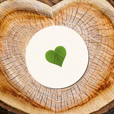 kartlerei bierdeckel nachhaltigkeit oekologisch nachhaltig biologisch abbaubar kompostierbar 400x400 - kartlerei Magazin