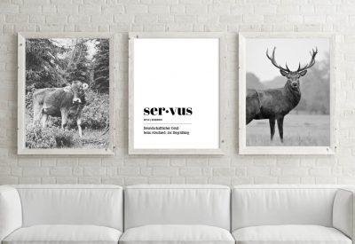 Poster set servus kuh hirsch 400x275 - Poster & Bilder